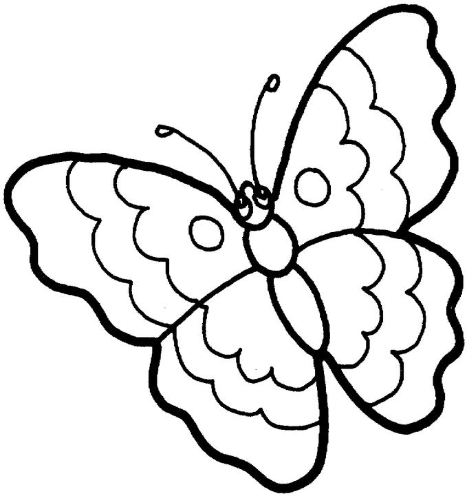 a to z kids stuff butterfly color page - Drawing For Kids To Color