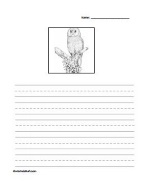 Owl Story Paper-1