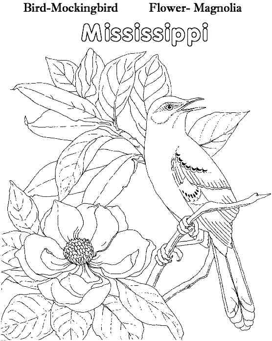 yellowhammer bird coloring pages - photo #36