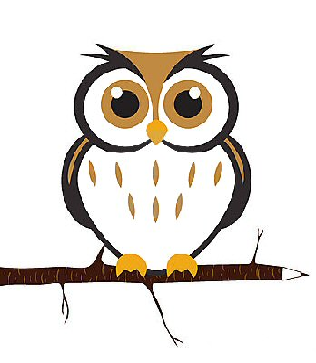 Owls Preschool Kindergarten Theme