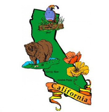 California State Symbols For Kids Kids